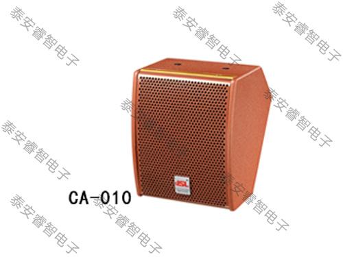 会议室音响-CA系列音箱 CA-010