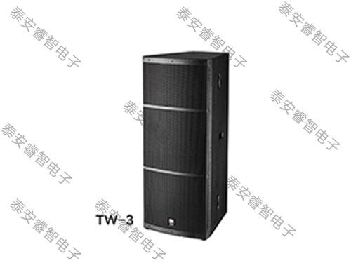 舞台演出音响-TW系列音箱 TW-3